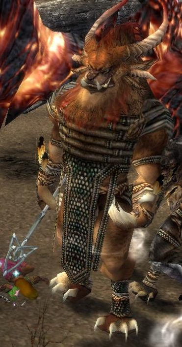 charr shaman in game